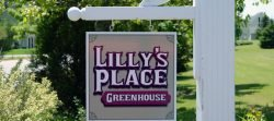 Lilly's Place Greenhouse